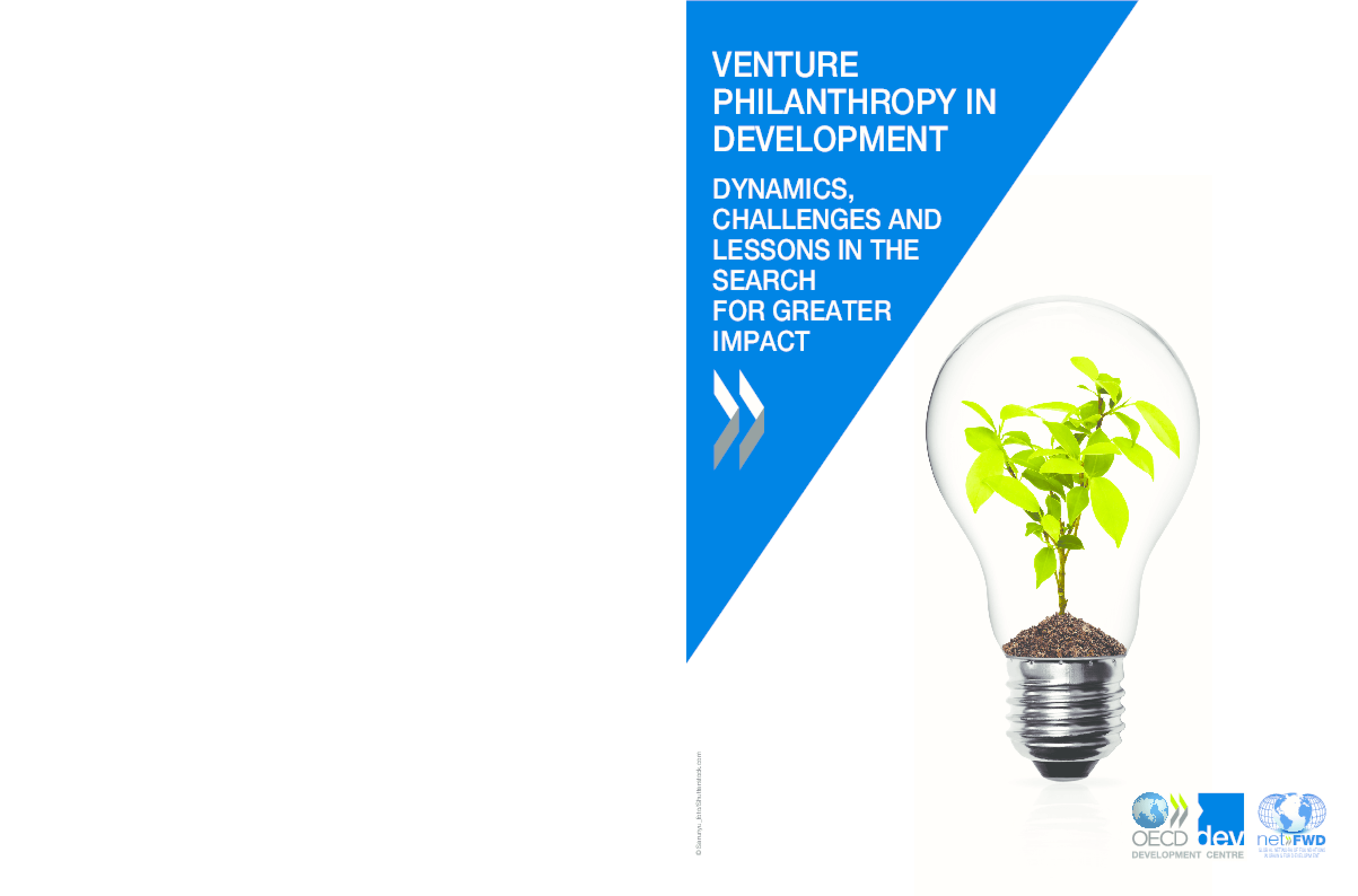 Venture Philanthropy In Development: Dynamics, Challenges and Lessons in the Search for Greater Impact