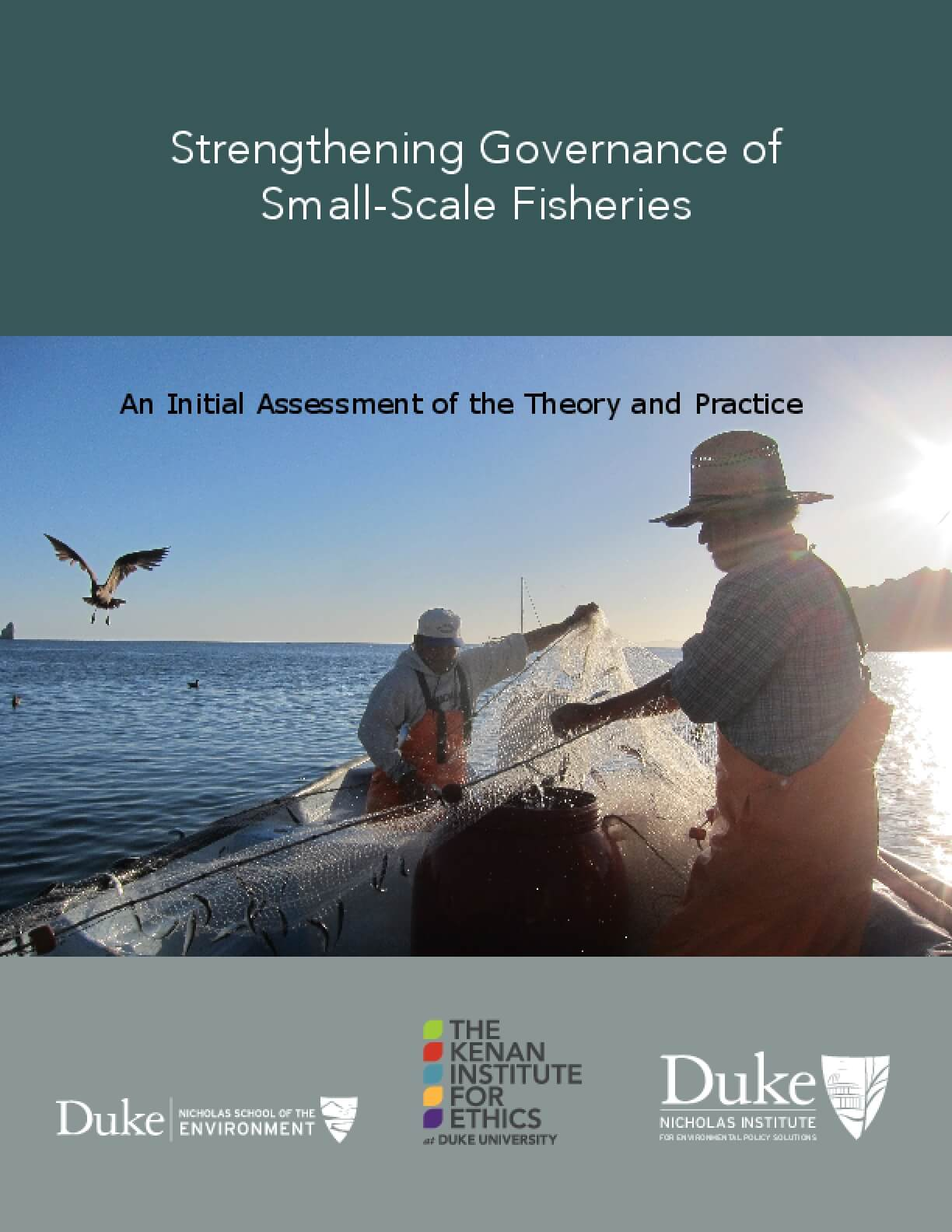Strengthening Governance of Small-Scale Fisheries: An Initial Assessment of the Theory and Practice