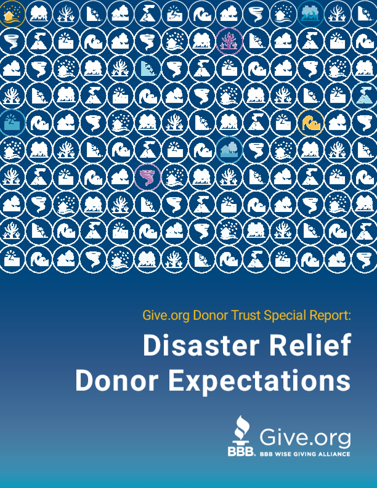 Disaster Relief Donor Expectations