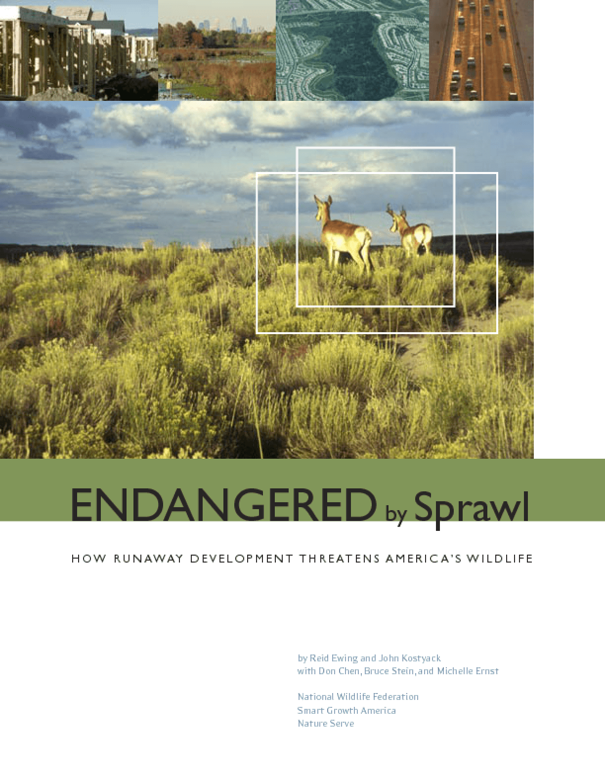 Endangered by Sprawl: How Runaway Development Threatens America's Wildlife